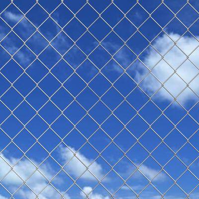 vidaXL Gard din plasă cu stâlpi și țăruși, 15x1,25 m, oțel galvanizat