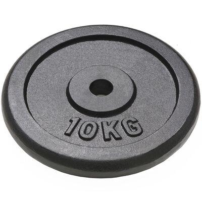 vidaXL Plăci de greutate, 2 buc., 2x10 kg, fontă