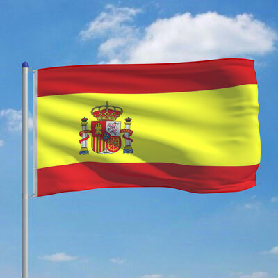 vidaXL Steag Spania și stâlp din aluminiu 6 m