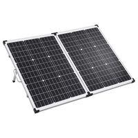 vidaXL Panou solar pliabil portabil 120 W 12 V