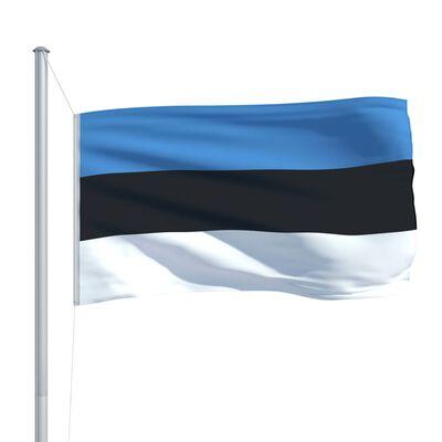 vidaXL Steag Estonia și stâlp din aluminiu, 6,2 m