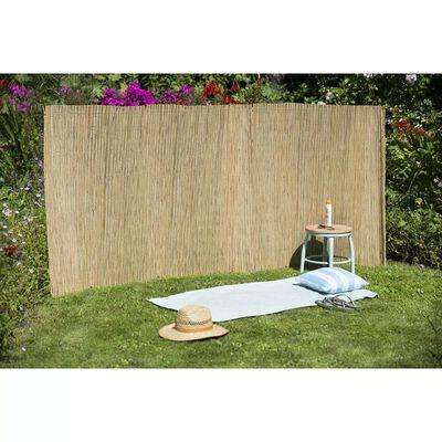 Nature Gard de grădină, 1,5x 3 m, trestie de rogoz
