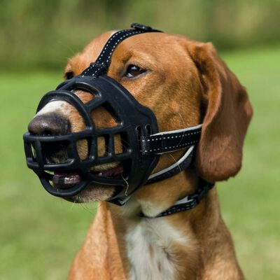 """TRIXIE Botniță câine """"Flex"""" mărimea XL 17616,"""