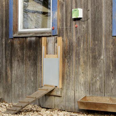 Kerbl Set ușă coteț găini automată, 40x43 cm